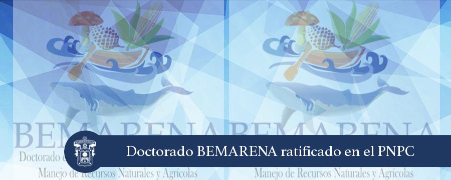 Banner: Ratificación BEMARENA