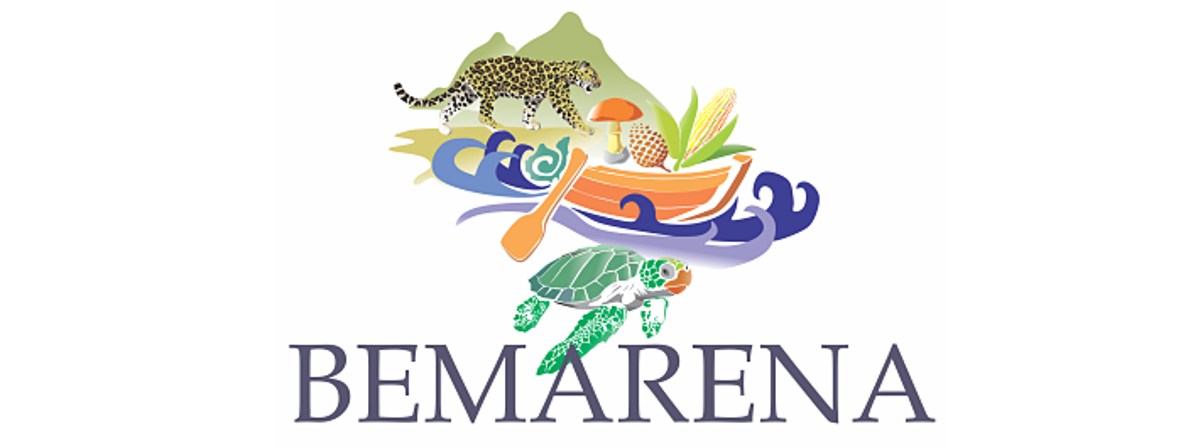 Banner: Bemarena