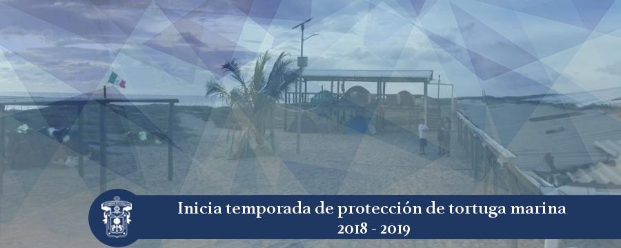 Banner: Campamento tortuguero