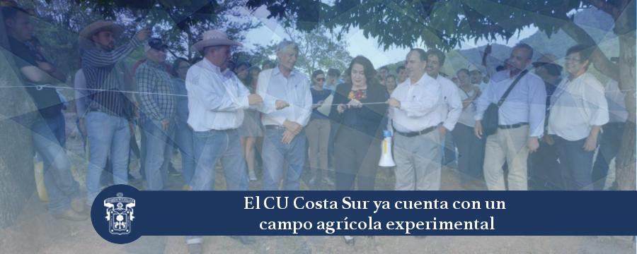 Banner: campo agrícola experimental