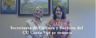 Banner: Reunión con secretaria de cultura