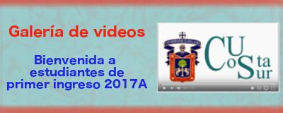 Boton de videos del CUCSur