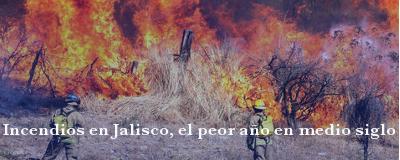 Banner: Incendios en Jalisco