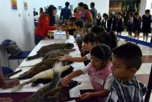 Nota: Exposición Biológica