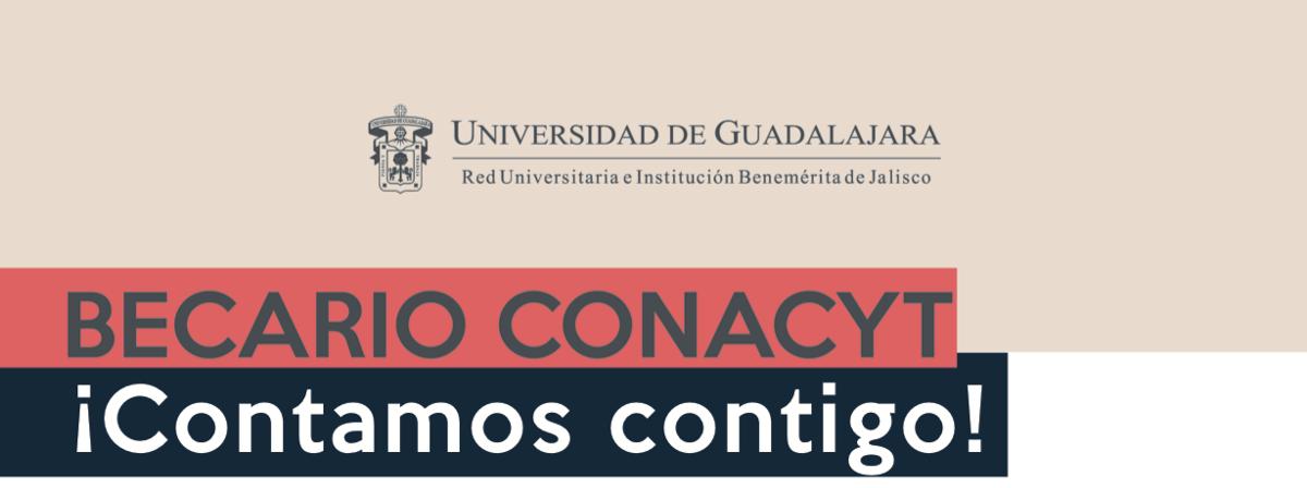 Banner: Conacyt Derecho
