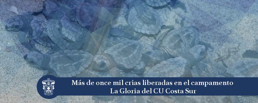 Banner: Campamento La Gloria